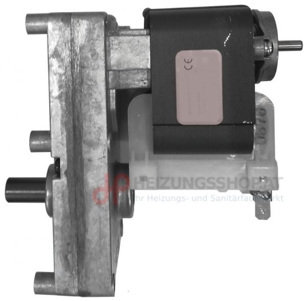 Iwabo Motor für Förderschnecke